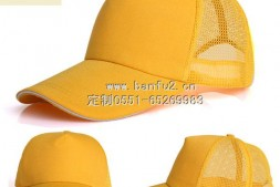 黄色棒球帽带网